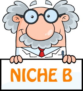 niche-b-professor